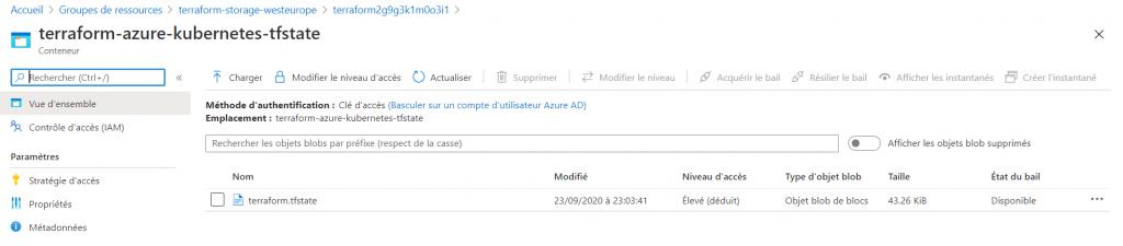 1 3 1024x225 - Provisionner avec Terraform un cluster AKS avec Availability Zone